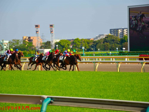 東京競馬場レース 焦点距離105mm